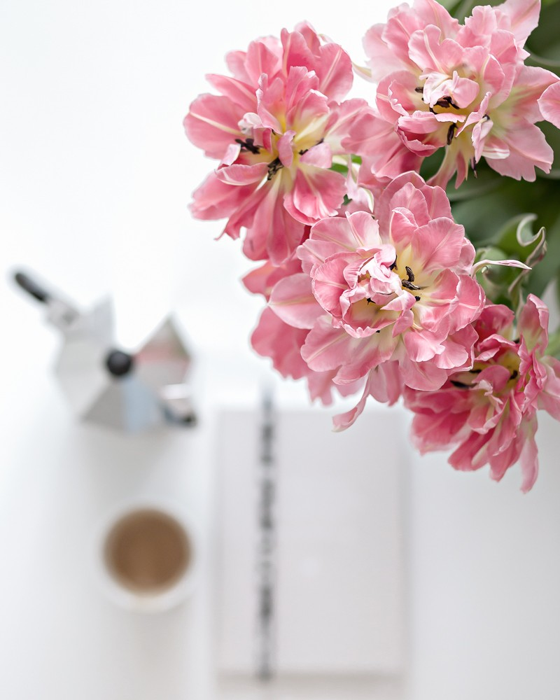 Flower madness - tulips (and tulip tips) | www.my-full-house.com | Top Scandinavian Interior and Lifestyle Blog