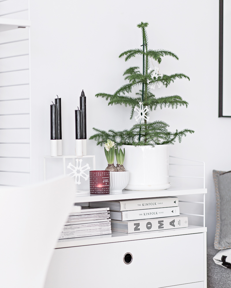 Araucaria | www.my-full-house.com | Top Scandinavian Interior and Lifestyle Blog