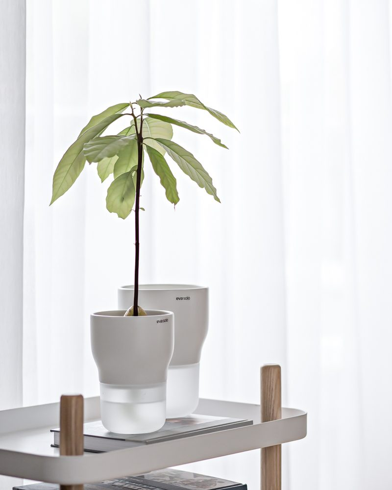 https://www.evasolo.com/Flower-and-herb-pots/
